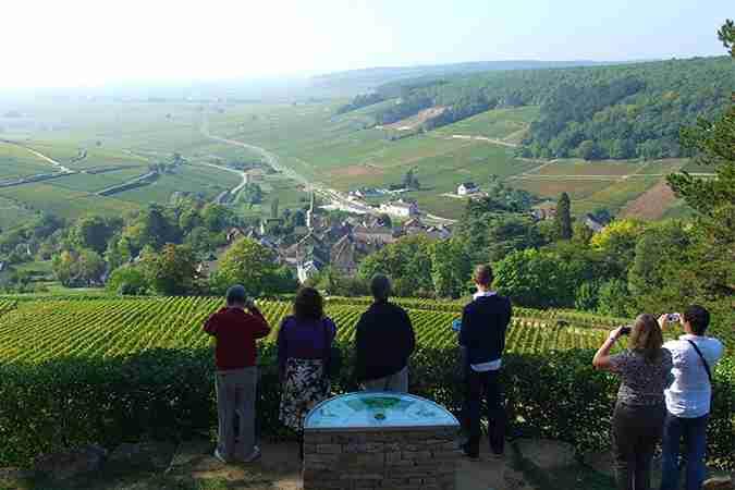 Premium Burgundy Wine Tour
