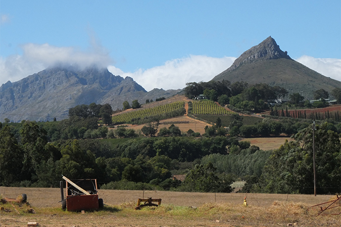 South Africa Wine Tour