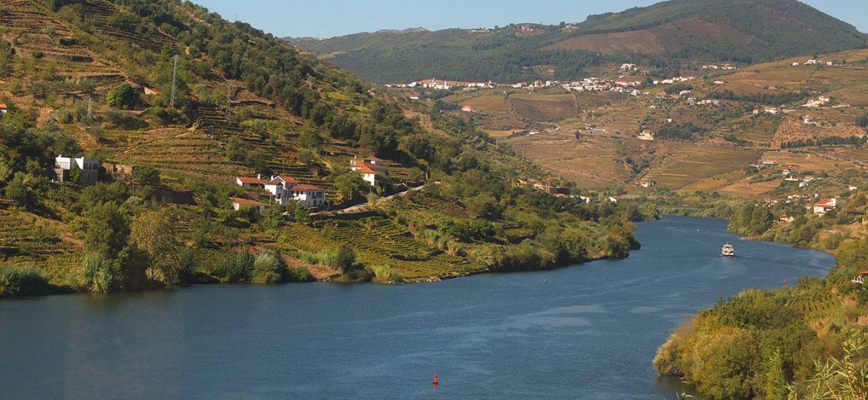 portugal-wine-tour-main
